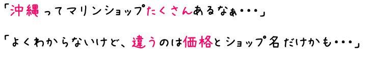 page-sesoko-5129